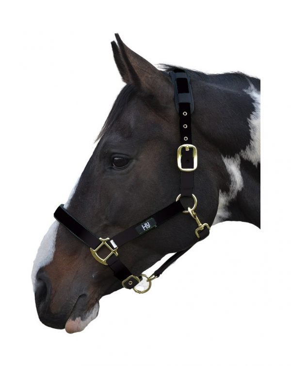 Hy Deluxe Padded Head Collar Hy