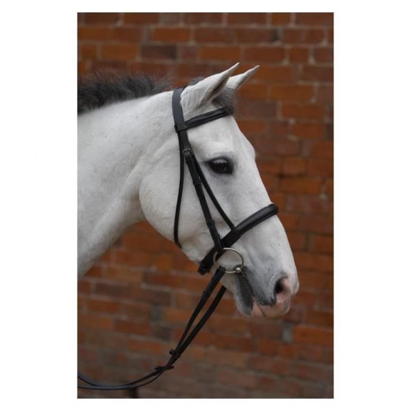 Hy Padded Cavesson Bridle with Rubber Grip Reins Hy