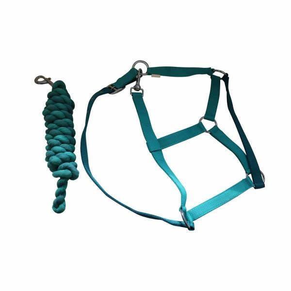 JHL Headcollar & Lead Rope Essential - Turquoise JHL/Jumpers Horse Line