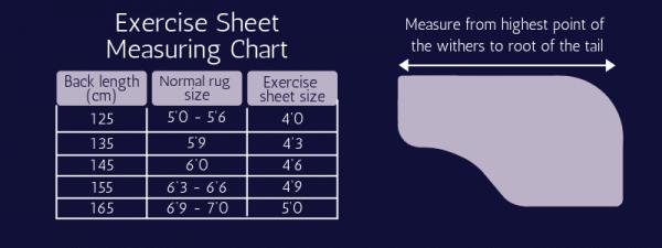 HyVIZ Reflector Exercise Sheet HyViz