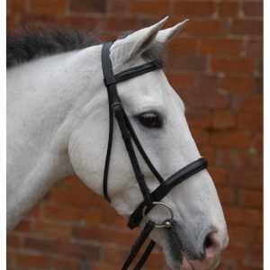 Bridles & Leather Wear