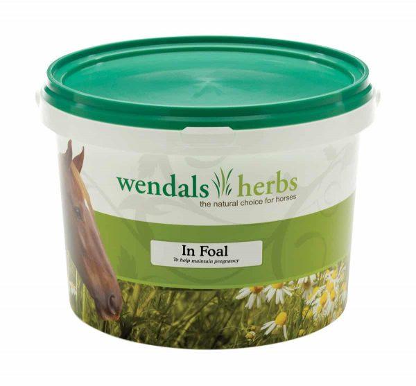 Wendals In Foal Wendals Herbs