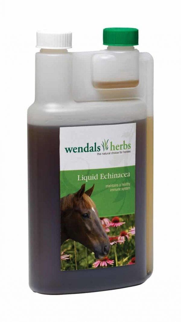 Wendals Liquid Echinacea Wendals Herbs