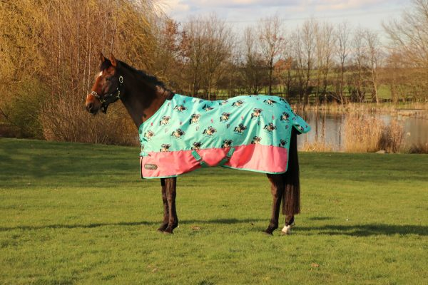 StormX Original 0g Turnout Rug - Thelwell Collection Trophy Hy Equestrian