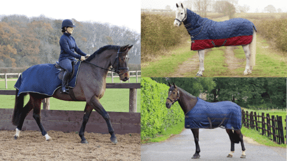 Horse Rugs. How to measure, why size matters & which rug your horse needs!
